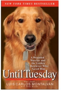 Until_Tues.cover