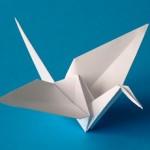 Origami_Image_02_h230